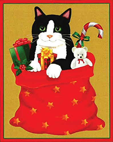 [Entertaining with Caspari Cat In Santa's Sack Christmas Cards, Box of 16] (Jesus Christmas Card)