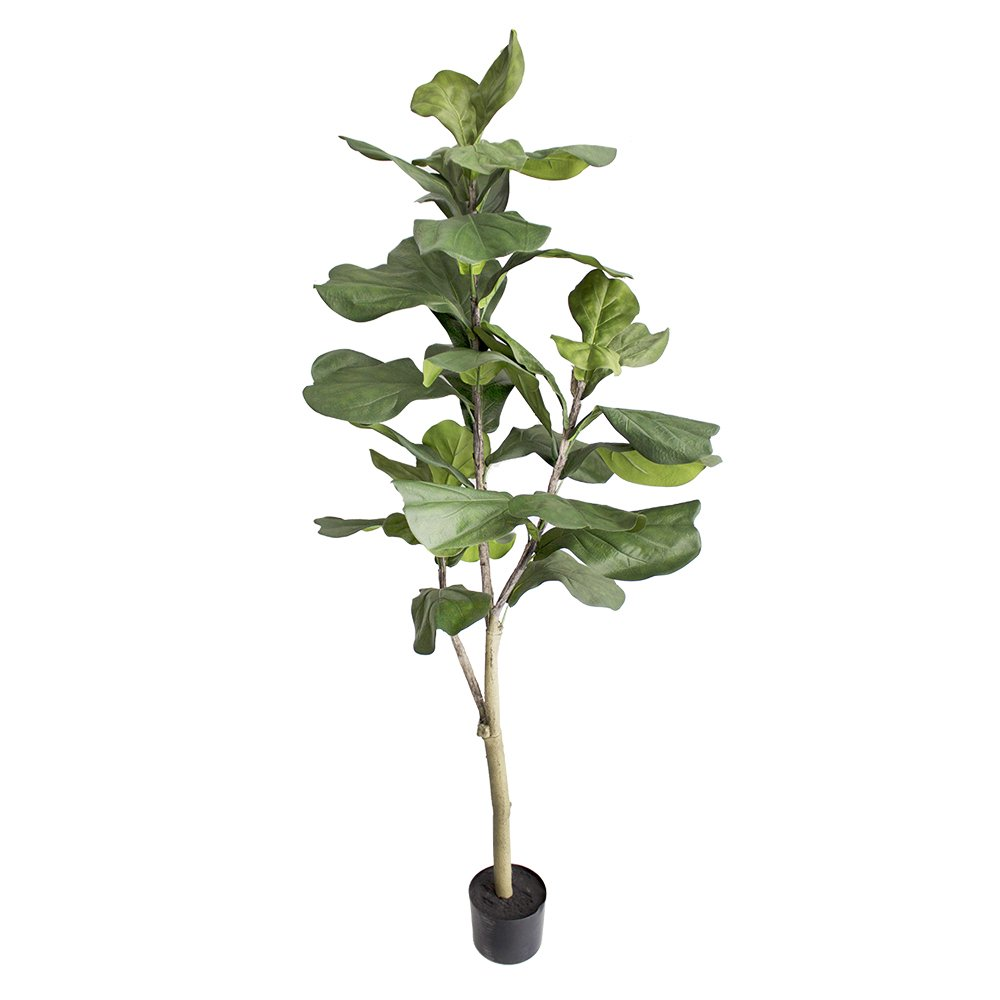 Ficus lyrata artificiel - Artificial fiddle leaf fig tree - Plante d'intérieur - Indoor plant - Houseplant Chine