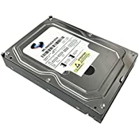 WL 500GB 16MB Cache 5400RPM SATA II (3.0Gb/s) 3.5 Internal Surveillance DVR Hard Drive - w/ 1 Year Warranty