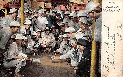 (US Sailors Life, Cockfighting Old Vintage Gambling Postcard Post Card)