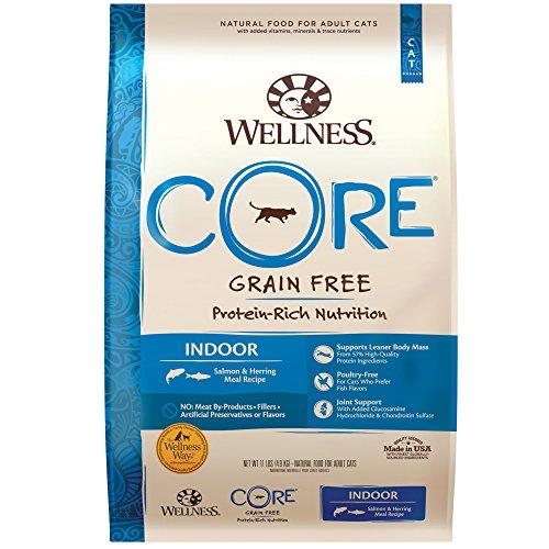 Wellness Core Natural Grain Free Indoor Dry Cat Food, Indoor Salmon & Herring, 11-Pound Bag ()