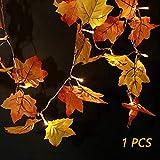 SILIVN Fall Decorations,Fall Garland,Fall Wreath,Thanksgiving Decorations,Christmas Decor Lighted Fall Garland 8.2 Feet | 20 Lights (1 Pack)