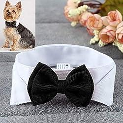 Edtara Moda Ajustable Pajarita Cuello Lindo Corbata Bowknot para Mascota Perro Gato Boda decoración
