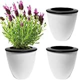 Evelots 3 Pack Of Self Watering Planters,Small Or Large,White Flower Pots, Small