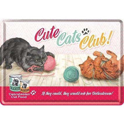 013fefae01b7 Amazon.co.jp: アニマルクラブ Cute Cats Club / ポストカード(ブリキ製 ...