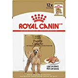 Royal Canin Breed Health Nutrition Poodle Loaf in