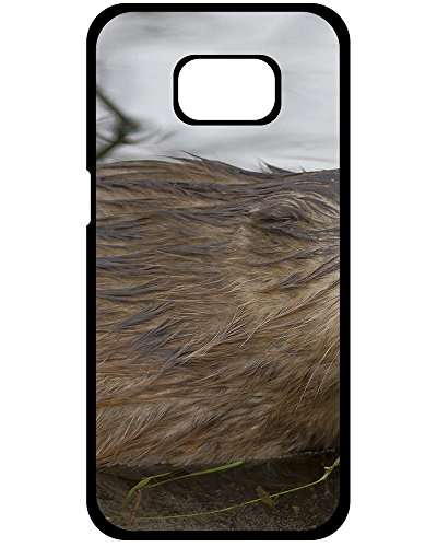 Y.H.X Samsung Galaxy S8 Hard Plastic Case muskrat wet animal Theme [Scratch Resistant] Uncommon Phone (Muskrat Case)