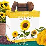 Nature's Blossom Sunflower Growing Kit - Grow 3 Different Sunflowers from Organic Seed. A Complete Beginner Gardeners Growing Set with Everything you need to Start Your Own Indoor Flower Garden at Home. Original Garden Gift for Men, Women and Kids.
