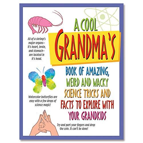 [해외]A Cool Grandma Activity Book / A Cool Grandma Activity Book