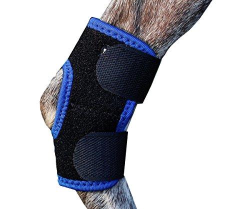TSAAGAN Dog's Leg Hock Joint Brace Heals Hock Wrap for Do...
