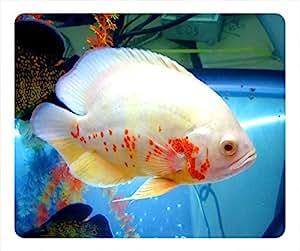 Fish Design Rectangular Mouse Pad - Aquarium Fish by runtopwell