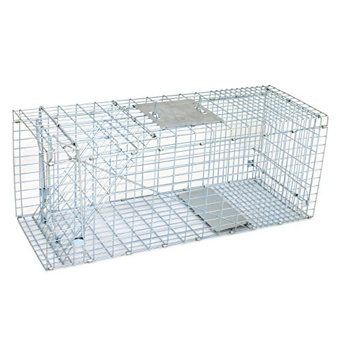 HomGarden Humane Live Animal Cage Trap 32' X 12.5' X 12' Steel Release 1-Door Rodent Cage for Rabbits, Stray Cat, Squirrel, Raccoon, Mole, Gopher, Chicken, Opossum, Skunk, Chipmunks, Groundhog Squire