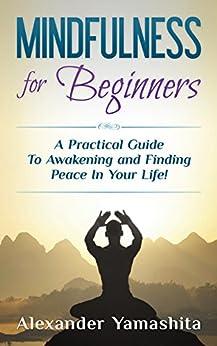 Mindfulness Beginners Practical Awakening Meditation ebook product image