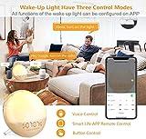 Sunrise Alarm Clock Wake-Up Light - Natural Light