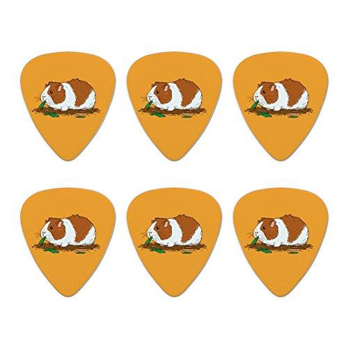 Guinea Pig Eating Novelty Guitar Picks Medium Gauge - Set of 6