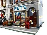 LEGO-10218-Creator-Pet-Shop