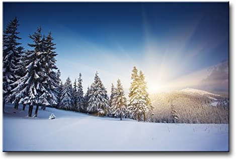 Pine Trees Snow Mountain Canvas Print Painting Framed Home Decor Wall Art Poster