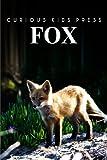 Fox, Curious Kids Press, 1493520172
