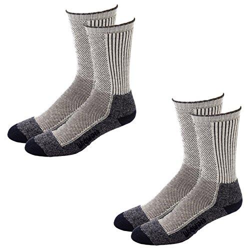 Cool-Lite Hiker Pro Crew Socks  - 2 Pack