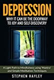 Depression: Why it can be the doorway to joy and self-discovery: A light path to mindfulness using...