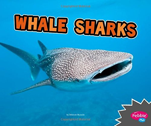 Read Online Whale Sharks (All About Sharks) pdf
