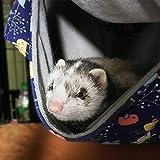 FULUE Ferret Rat Hammock Bed Nation Cage