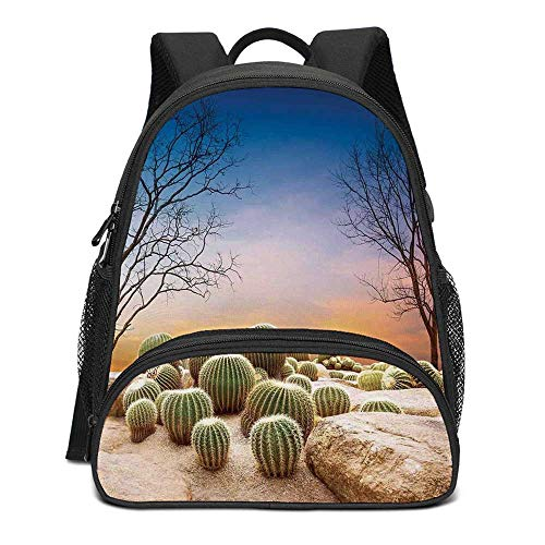 Cactus Decor Durable Kids Backpack,Cactus Balls with Spikes on a Montain Desert Sand Mexican Landscape Photo for School Travel,10