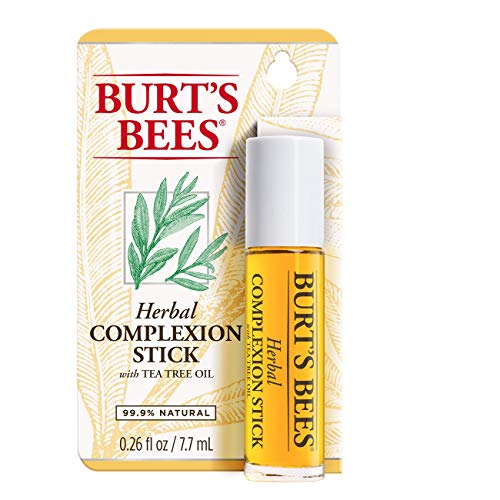 Burt's Bees Herbal Complexion Stick (Pack of 2) (Best Drugstore Acne Spot Treatment)