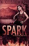 Spark, K. C. Stewart, 0991576500