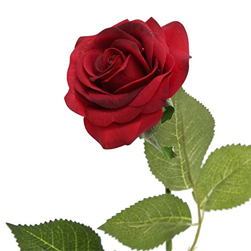Deep Red Rose - Angel Isabella 10 Stems of Real touch medium open Real Touch nice rose (Deep Red)