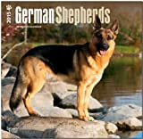 German Shepherds 2015 Square 12x12 (Multilingual Edition)