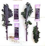 Amazing Grass Green Superfood Antioxidant: Organic