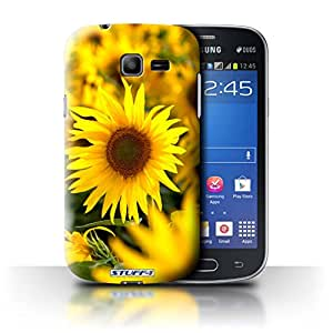 STUFF4 Phone Case / Cover for Samsung Galaxy Star Pro/S7260 / Flower Fields Design / Floral Garden Flowers Collection