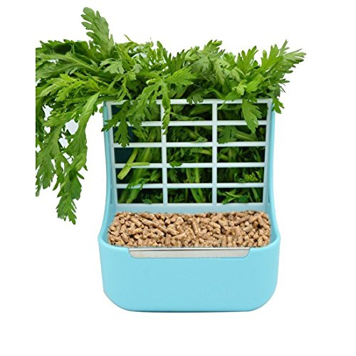 - SunshineBio Rabbit Hay Feeder Rack Food Bin Feeder, Grass and Food Double Use rabbit Feeder,Hay Feeders Supply for Rabbit Guinea Pig Chinchilla (Blue)