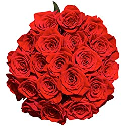 Fresh Cut Roses | 50 Red Roses for Valentine's Day