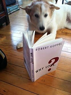 Robert Koppel
