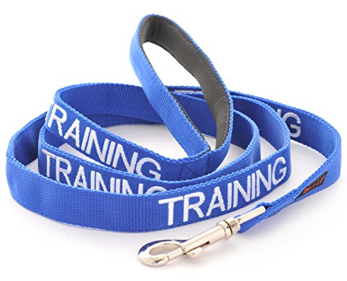 TRAINING Blue Color Coded 2 4 6 Foot Or Coupler Professional Dog Leash (Do Not Disturb) PREVENTS Accidents By Warning Others of Your Dog in Advance (Standard leash) (Type Iv Ring 30')