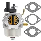 CCR2450 carburetor for Toro 210 221 Powerclear Snowblower Briggs & Stratton 801396 801233 801255 0841322 Cycle Lawnboy Insight CCR3650 (CCR2450)