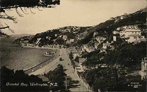 Oriental Bay Wellington, New Zealand Original Vintage Postcard