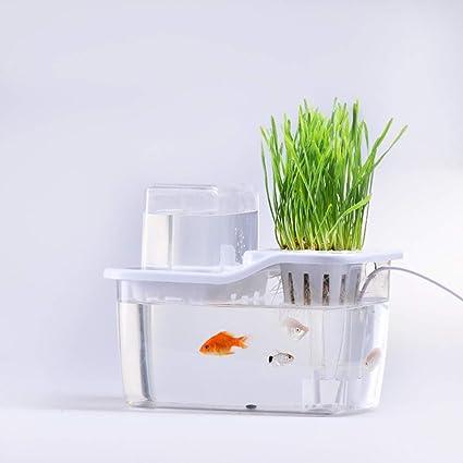 CHEYAL Tanque De Pescados del Jardín del Agua, Sistema De Cultivo Hidropónico. Pecera con