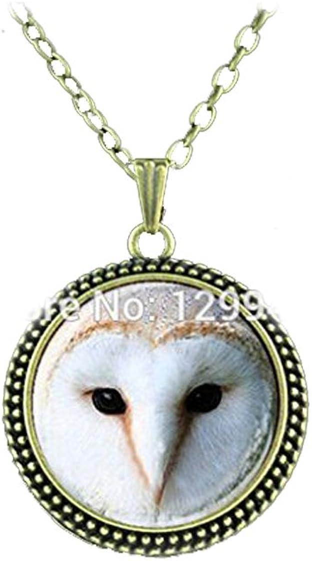 Fashion Antique Bronze Blue Eye Owl Locket Retro Pendant Long Necklace Jewelry.