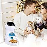 Iseebiz Automatic Cat Feeder 3L Pet Food