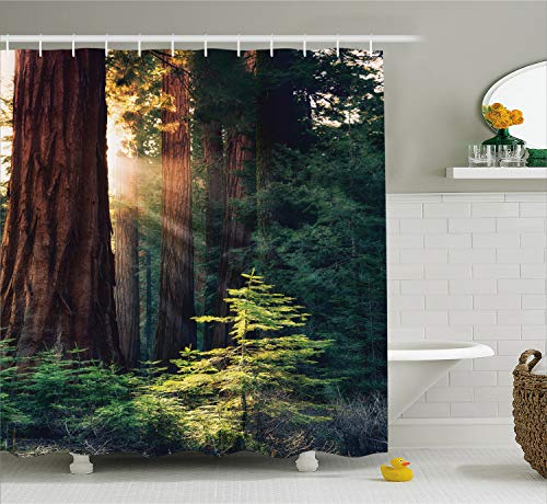 Ambesonne National Parks Home Decor Shower Curtain, Morning Sunlight in Wilderness Yosemite Sierra Nevada Nature Art, Fabric Bathroom Decor Set with Hooks, 70 Inches, Green Brown