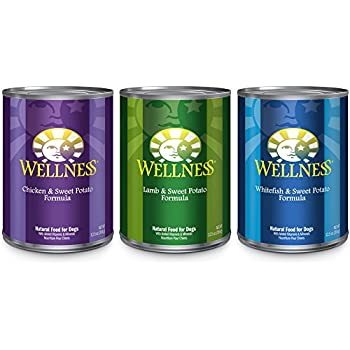 Wellness 95 Natural Wet Grain Free Canned Dog Food Best