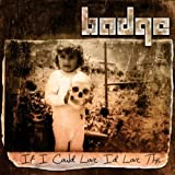 If I Could Love I'd Love This by Badge (2013-08-03)