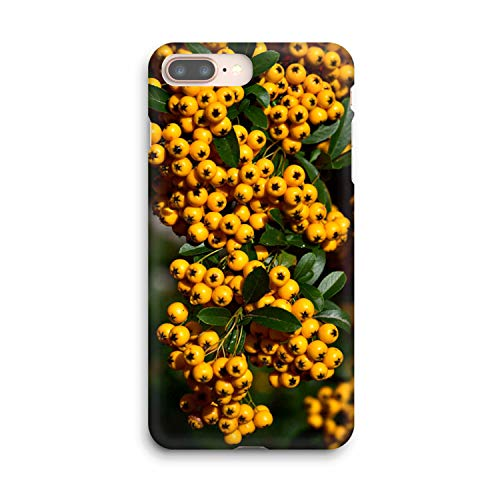 Compatible Citrus Harvest Soft Gel Case/Replacement for, if Applicable for iPhone 8 Plus