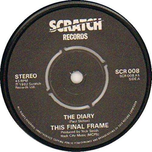 Vinyl Record Final Scratch (Diary)
