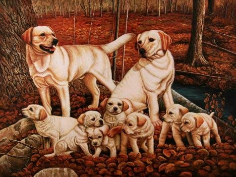 Oil Painting 'Dogs In The Woodland' Printing On Perfect Effect Canvas , 30x40 Inch / 76x102 Cm ,the Best Living Room Decor And Home Decor And Gifts Is This Best (Oval Tilt Top)
