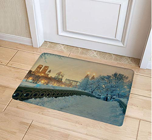 JYDIY 3D Printing Doormat, Decorative Polyester Floor Mat with Non-Skid Backing, 20W X 31L Inches Entry -