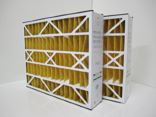 20x25x5 MERV 11 Skuttle High Efficiency Replacement Filter (2 Pack)